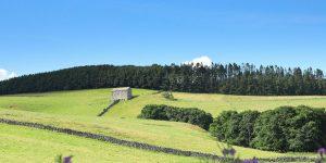 View Near Dacre Cumbria